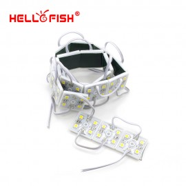 Hello Fish 100pcs  DC12V  5050 4 LED Modules White/Warm White IP65 Waterproof  for LED Signs Advertisements